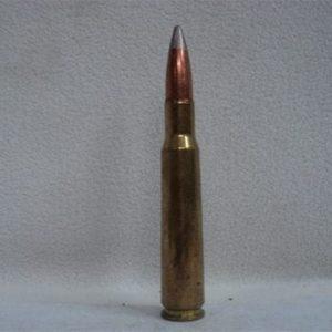 50 cal brass case api dummy round