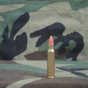 308 plastic bullet riot training ammo.